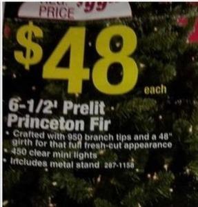 6.5' Prelit Princeton Fir Tree
