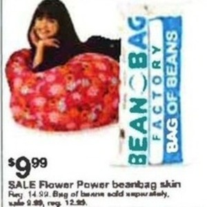 Flower Power Beanbag Skin