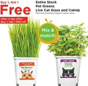 Entire Stock of Pet Greens Live Cat Grass & Catnip