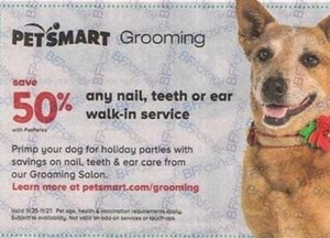 Any Nail, Teeth or Ear Walk-in Service