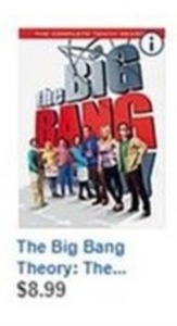 The Big Bang Theory: The Complete Tenth Season (DVD)