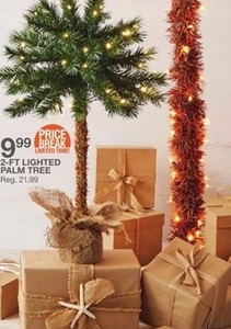 2 Ft Lighted Palm Tree