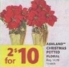 Michaels Ashland Christams Potted Floral