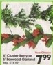 A.C. Moore 6' Cluster Berry or 6' Boxwood Garland