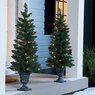 Big Lots Set of 2 Pre-Lit 3.5ft. Urn Trees