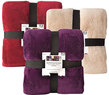 Big Lots Living Color Microplush Blankets - Twin/Full