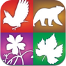 App Store Audubon Guides � A Field Guide to Birds, Mammals, Wildflowers, and Trees