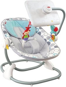 Fisher Price Ipad Apptivity Seat