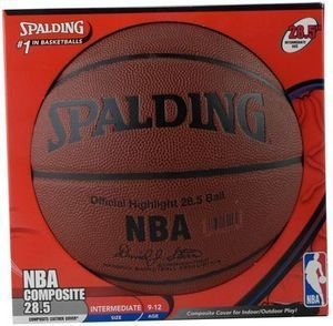 Spalding NBA Highlight 28.5 in. Basketball