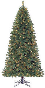 7' Carson Spruce Green Pre-Lit Quick Set Tree