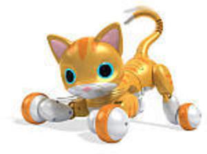 All Zoomer Kitties