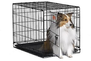 23 x 25 x 36-In. Dog Crate