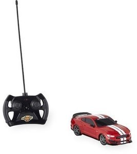 Fast Lane 1:24 Scale Radio Control Car